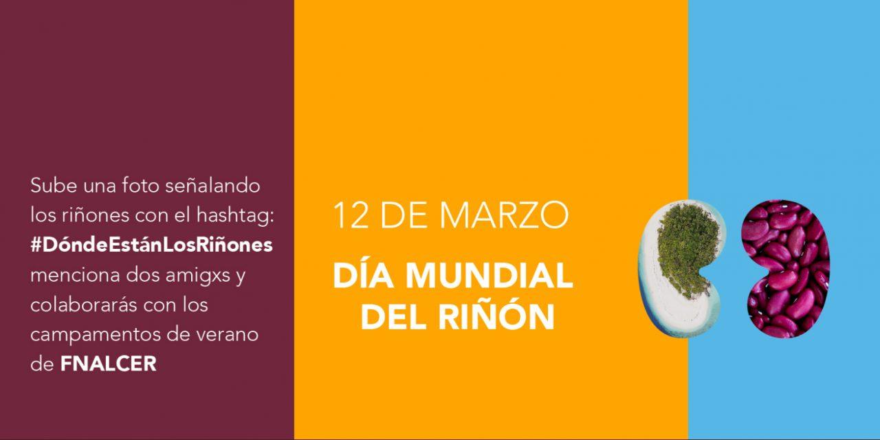 #DóndeEstánLosRiñones, campaña por el Día Mundial del Riñon que busca concienciar sobre la importancia de las enfermedades renales