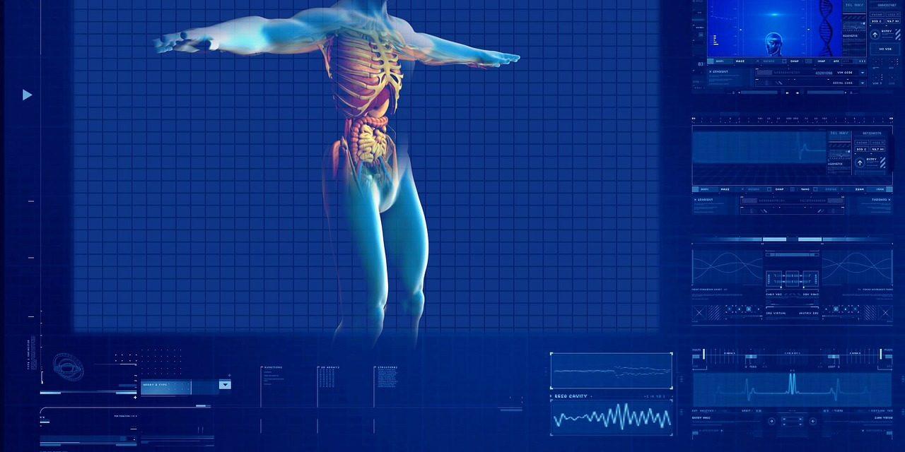 Las últimas innovaciones en órganos artificiales