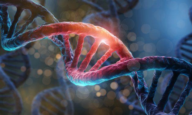 Avance en el tratamiento de la enfermedad renal aguda con el descubrimiento de un nuevo método para suministrar células madre curativas